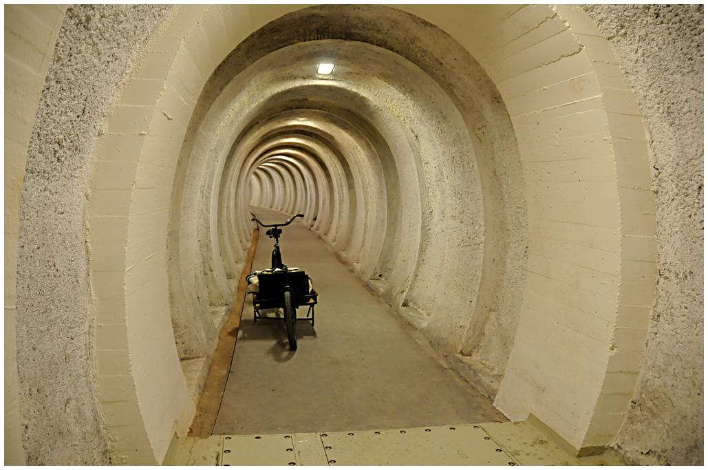 Tunnel formet som en halvcirkel fører 300 meter ind under rold skov